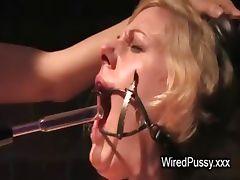 Bdsm brunette babe waxed in femdom scene